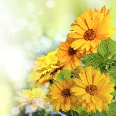 Наклейка Kwiaty