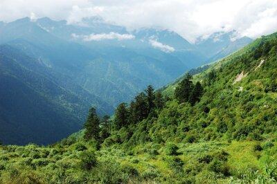 Наклейка ландшафт горного леса и долины