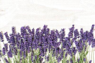 Наклейка Лаванда цветы на белом фоне деревянных текстур
