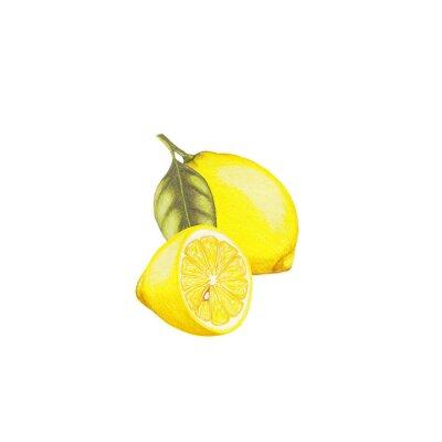 Наклейка Лимонный иллюстрация