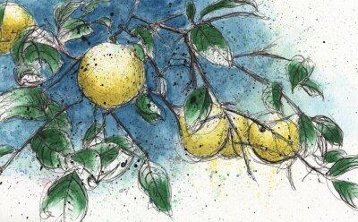 Наклейка Лимонное дерево ветви