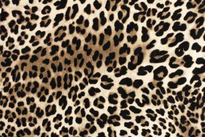 Наклейка Леопардовая сказочная текстура. Модный текстильный фон.