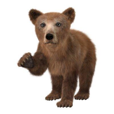 Наклейка Маленький бурый медведь