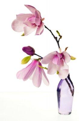 Наклейка Magnolia Джейн Цветет