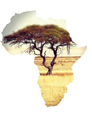 Наклейка Карта Африки континент концепции с акации
