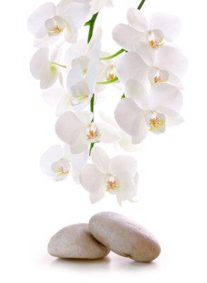 Наклейка Massage Stones with Orchid.