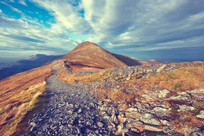 Наклейка Mountain Trail