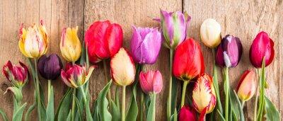 Наклейка разноцветные тюльпаны на деревянном фоне, баннер, старые доски, весенние цветы, тюльпаны на досках