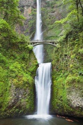 Наклейка Малтнома падает в Columbia River Gorge, штат Орегон, США