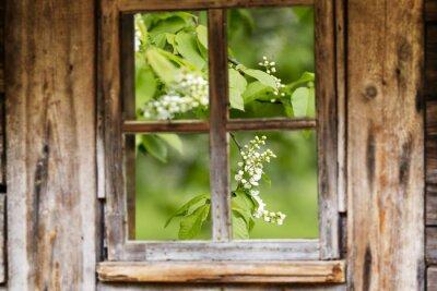 Наклейка Старая деревянная рамка окна, весна, цветущие деревья.