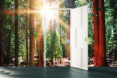Наклейка Открыть дверь в концепции солнечной лесной