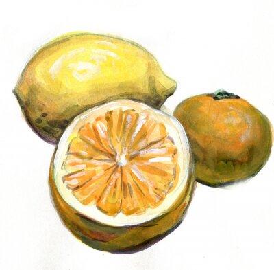 Наклейка Апельсин, лимон, мандарин. Цитрусовые. Акварельная живопись