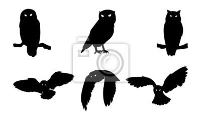 Наклейка Сова птица Силуэт