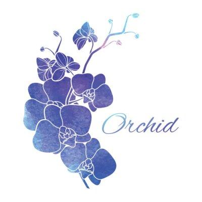 Наклейка Окрашенные Фиолетовый Акварель Орхидеи
