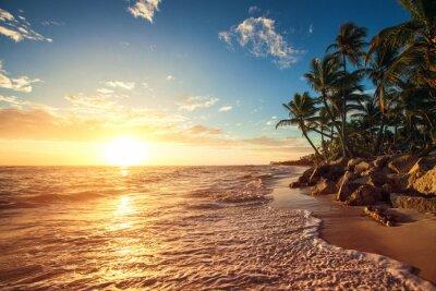 Наклейка Пальмы на тропическом пляже