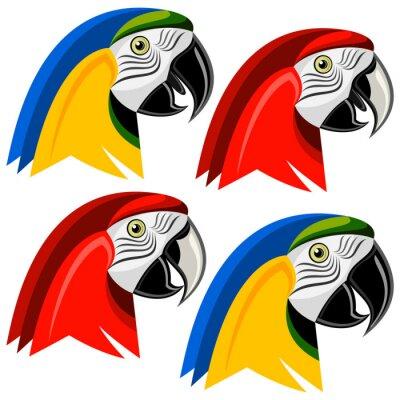 Наклейка Попугай