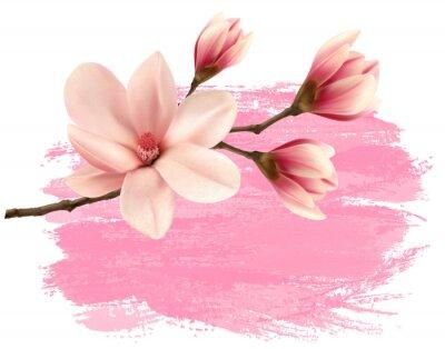 Наклейка Розовые краски магнолии филиал баннер. Вектор.