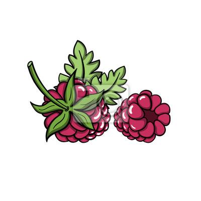 Наклейка RaspberryVector