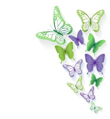 Наклейка Реальные красочные бабочки, изолированных на весну
