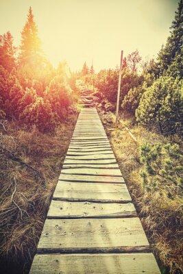 Наклейка Ретро стилизованный деревянный горный путь в горах на закате.