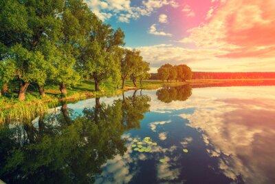 Наклейка Берег реки с деревьями на закате
