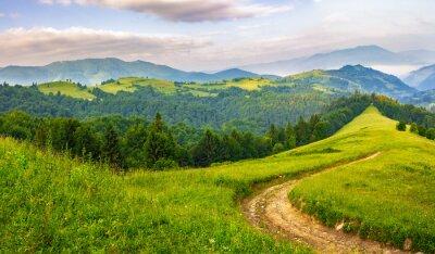 Наклейка Дорога через хвойный лес в горах на рассвете