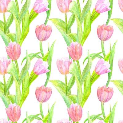 Наклейка Бесшовная текстура с элегантными тюльпанами для вашего дизайна. Акварельная живопись
