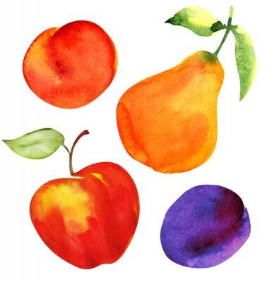 Наклейка Набор фруктов. Яблоко, груша, слива, абрикос.