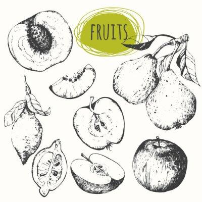 Наклейка Набор рисованной яблоко, лимон, груша, персик. Эскиз фрукты.
