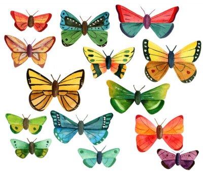 Наклейка Набор многих различных акварельными бабочек на белом фоне