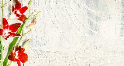 Наклейка Потертый шик фон с красными цветами орхидеи, вид сверху, место для текста.