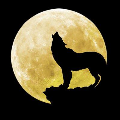 Наклейка Силуэт волка перед луной