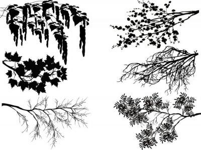 Наклейка шесть ветвей деревьев весной на белом