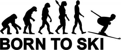 Наклейка Горнолыжный спуск Эволюция