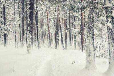 Наклейка Снегопад в зимнем лесу.
