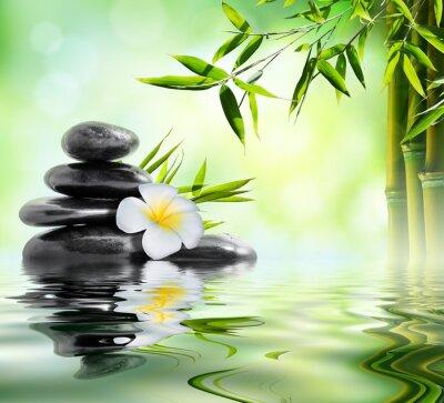Наклейка санаторно-курортное лечение массаж в саду с жасмина и бамбука