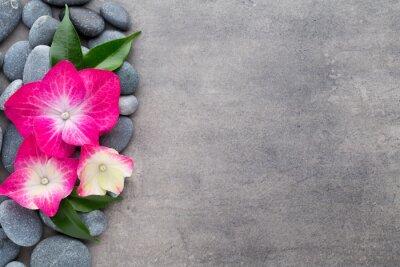 Наклейка Спа камни и цветы, на сером фоне.