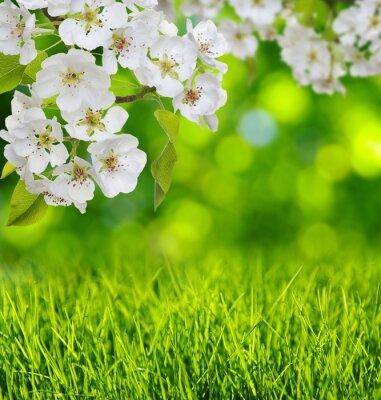 Наклейка Весна в цвету и травы
