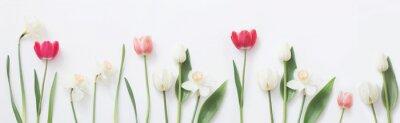 Наклейка весенние цветы на белом фоне