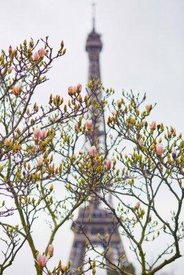 Наклейка Весна в Париже