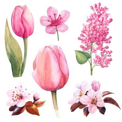 Наклейка весенний акварельный цветок с тюльпаном и сиренью