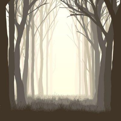 Наклейка Площадь иллюстрации поляне в лесу.