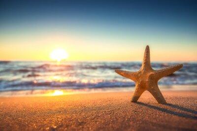Наклейка Морская звезда на пляже на рассвете