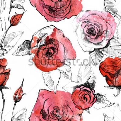 Наклейка Карандаш, акварель рисованной реалистичные красные розы. Ботаническое искусство живописи иллюстрации. Старинный дизайн для SketchBook, книга путешествий, открытки, открытки, пригл