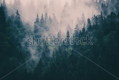 Наклейка Туманный пейзаж с еловым лесом в стиле битник винтажном стиле ретро
