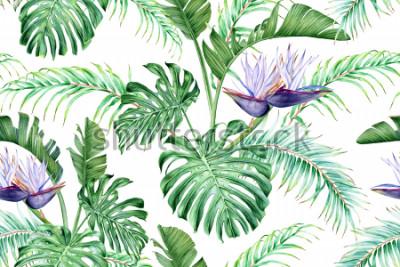 Наклейка Белая Стрелиция и тропические листья. Редкий экзотический цветок. Акварель бесшовные модели.