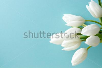 Наклейка белый тюльпан