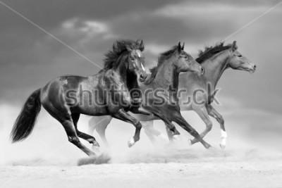 Наклейка Horse herd run in dust