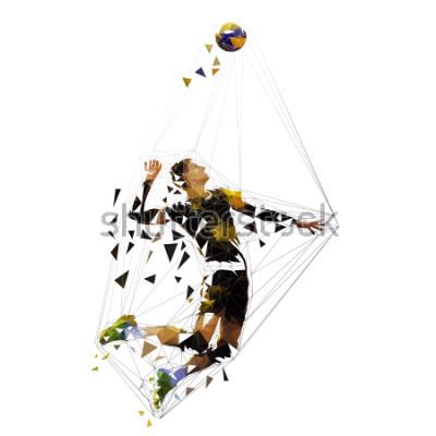 Наклейка Volleyball player serving ball, polygonal vector illustration