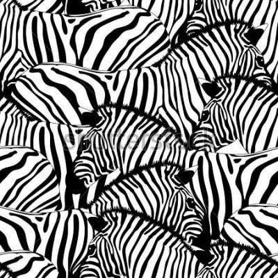 Наклейка Zebra seamless pattern.Savannah Animal ornament. Wild animal texture. Striped black and white. design trendy fabric texture, illustration.